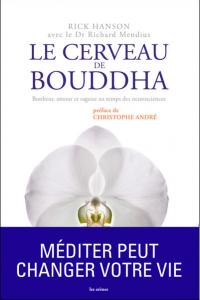 Le cerveau de Bouddha dans Bibliographie captur1-200x300