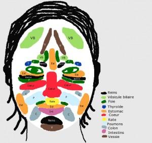 Un point de vue sur le pourquoi des boutons ou taches sur le visage, en Médecine Chinoise dans Energie tcm-face-300x282